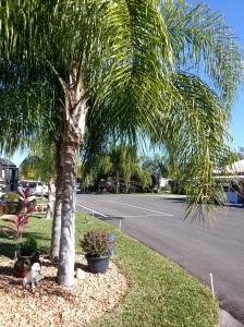 Torrey Oaks RV & Golf Resort