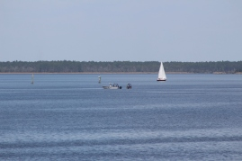 Search boat and boat with dive team