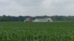 Farmstead in field of corn